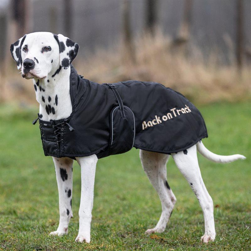 back on track nättäcke hund
