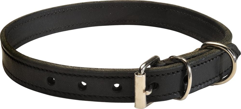 Halsband  Basic Showmaster®