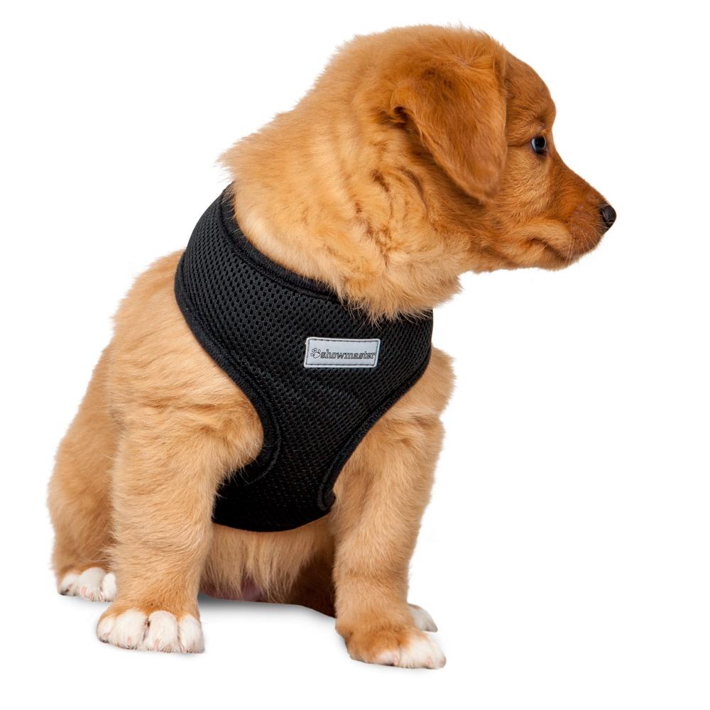 Hundsele  Puppy Showmaster®