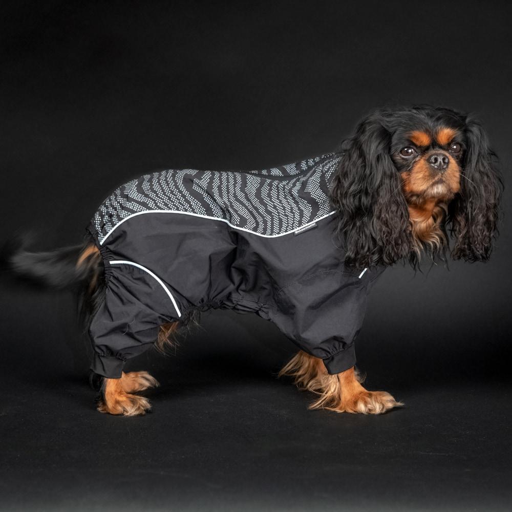 Hundoverall  Activity Showmaster®
