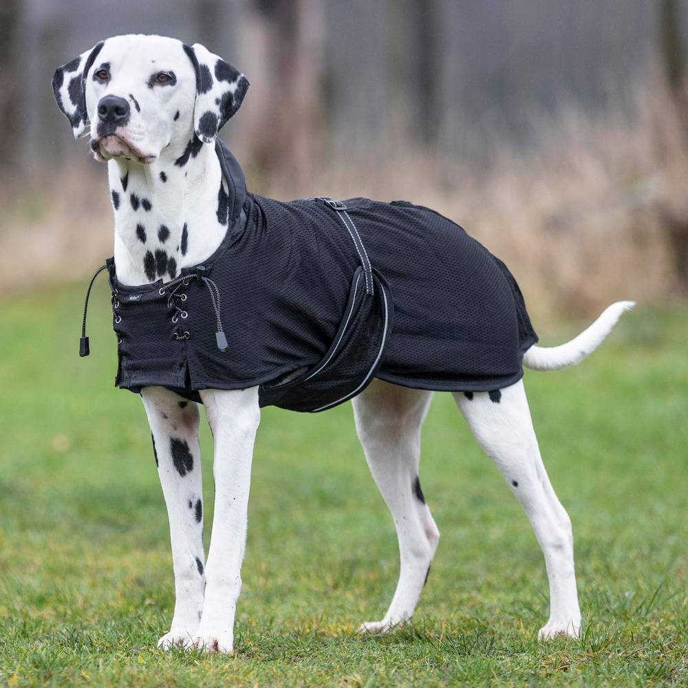 Nättäcke Hund  Back on Track®