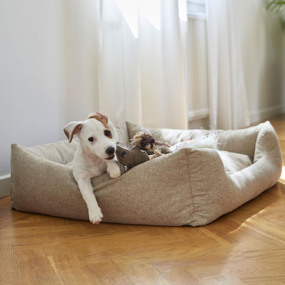 Hundbädd  Flax traxx®