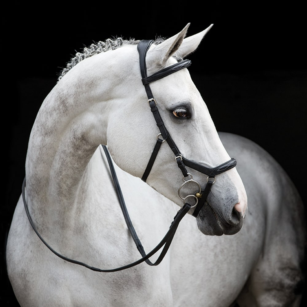 Träns  Micklem® Deluxe Competition Horseware®