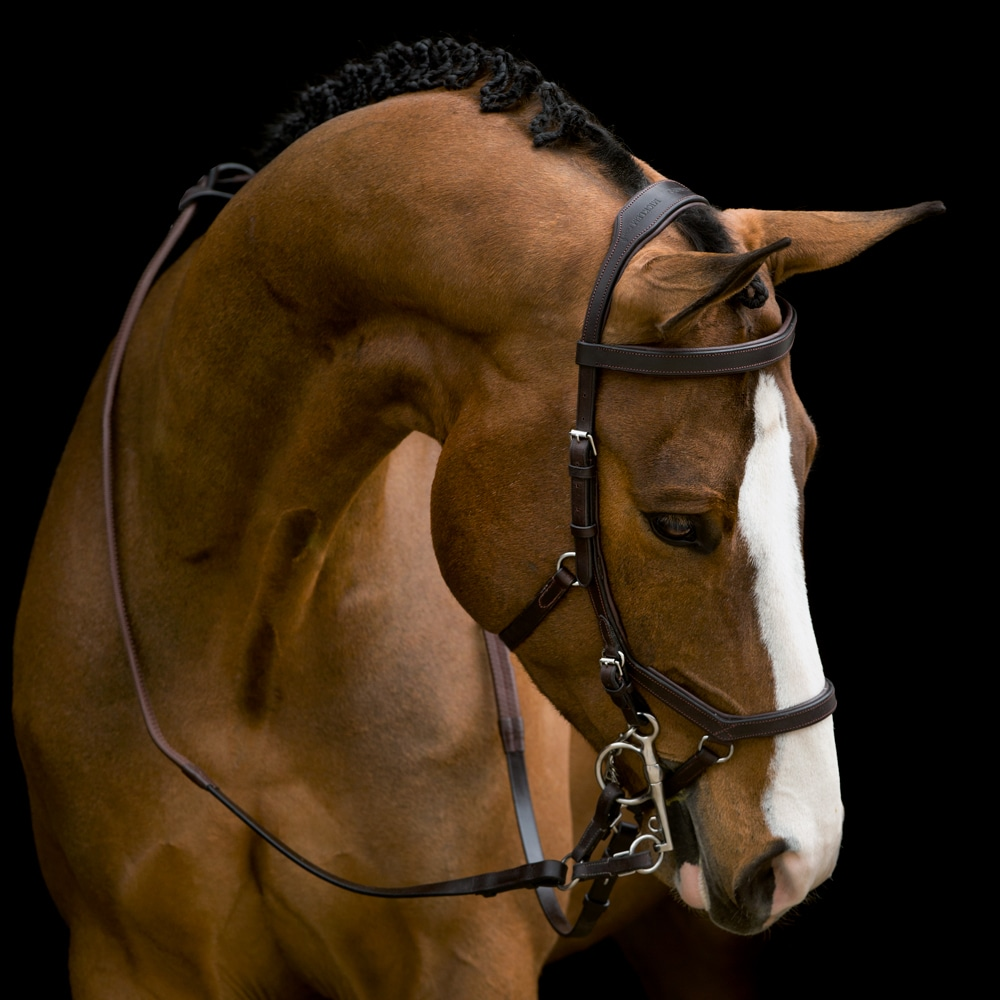 Träns  Micklem Competition Horseware®