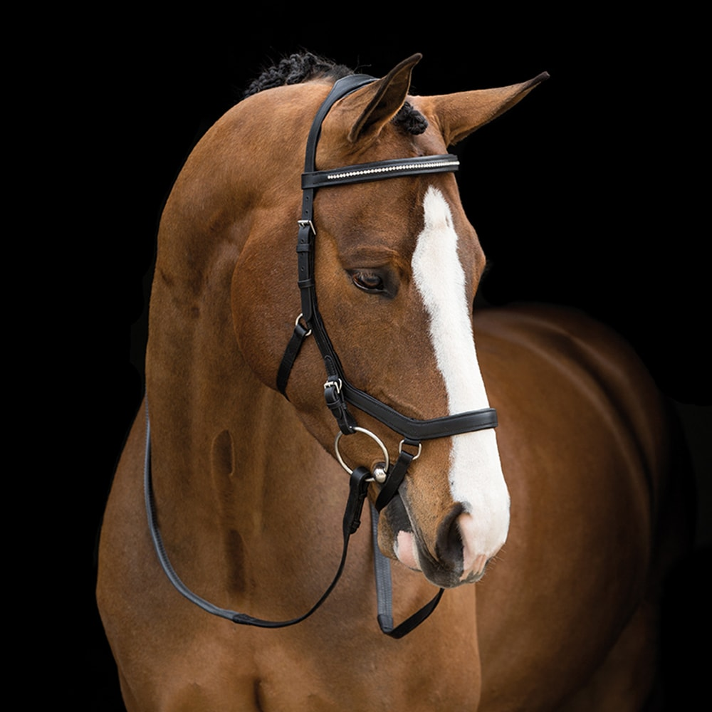 Träns  Micklem® Diamante Competition Horseware®
