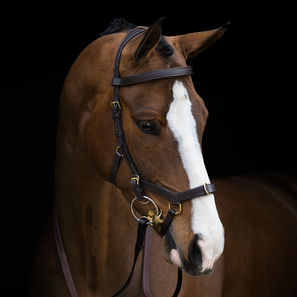 Träns  Micklem Multibridle Horseware®