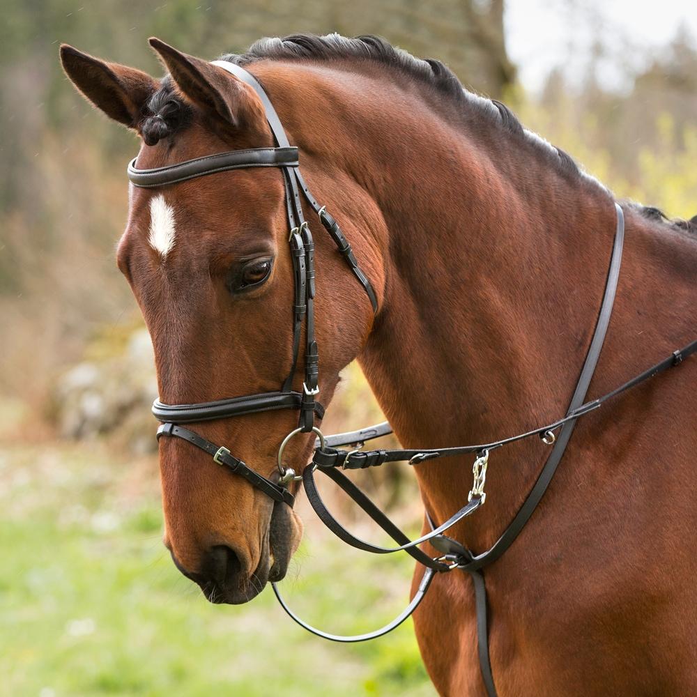 Thiedemantygel Ponny  Fairfield®