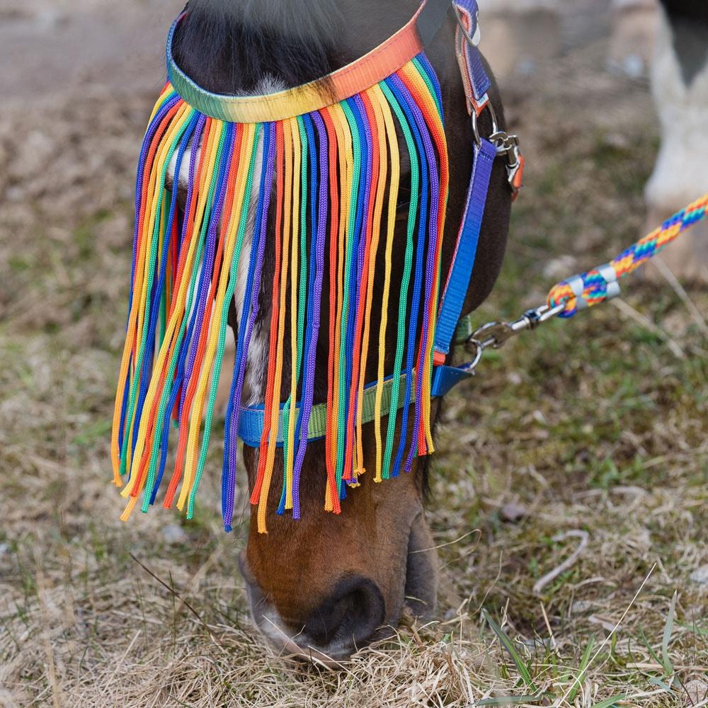 Flugpannband  Rainbow Fairfield®