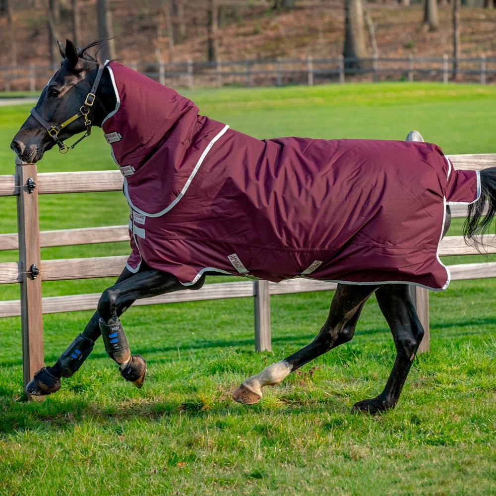 Utetäcke  Amigo Hero Ripstop Plus 200 Horseware®