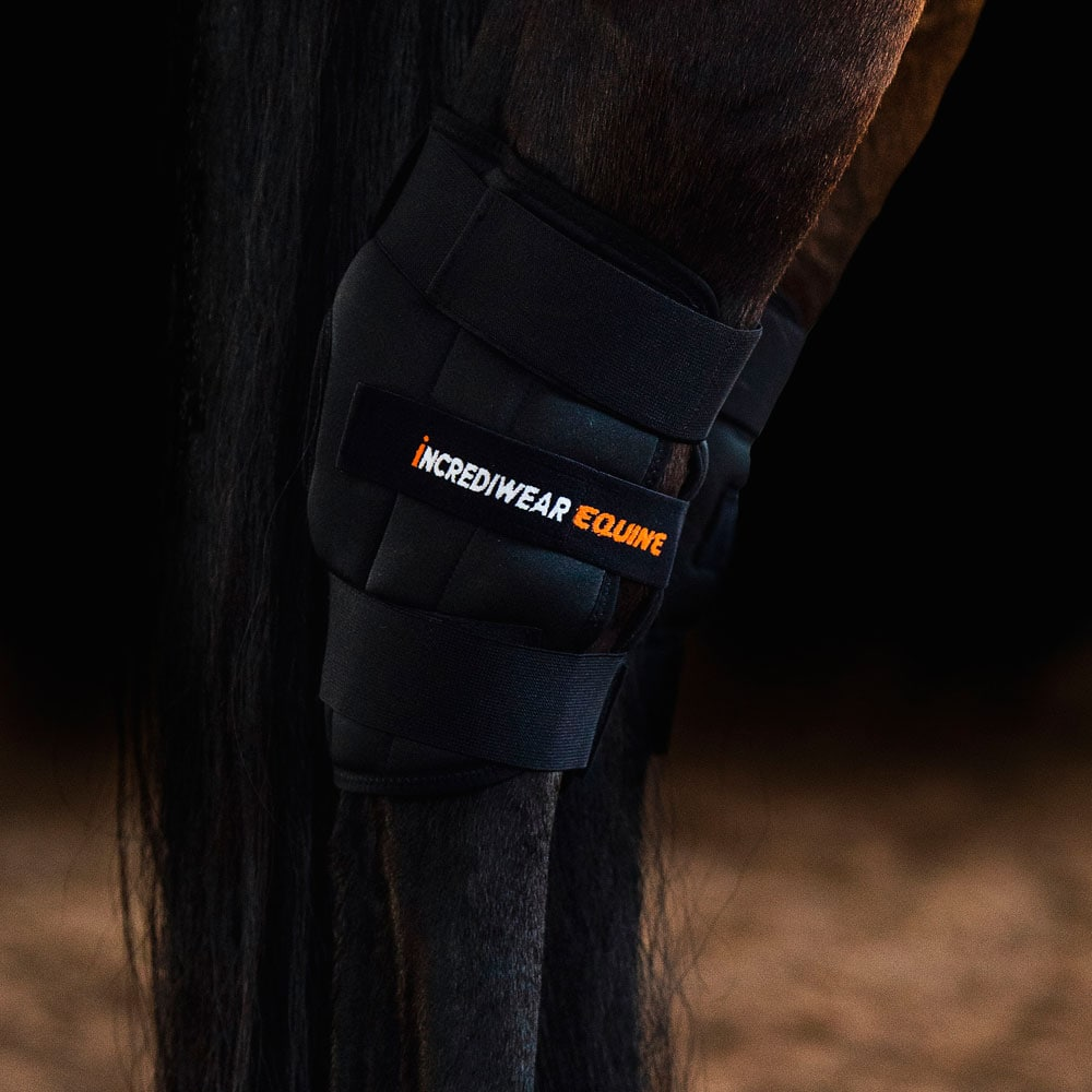 Hasskydd  Circulation Hook Boot Left Incrediwear Equine