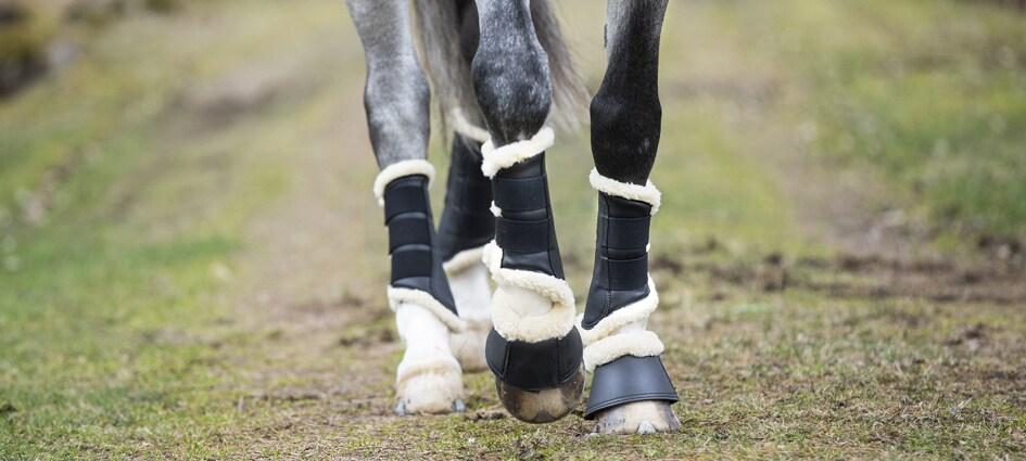 benskydd reflex häst