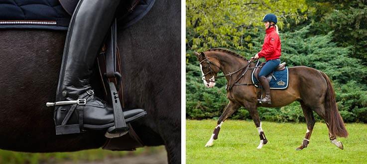 vaccination häst ridning