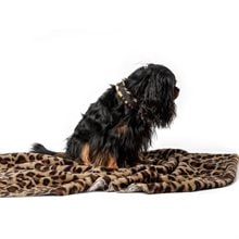Hundfilt Fleece Leo Showmaster®